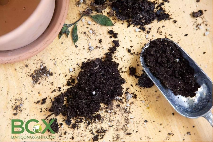 Đất trộn sẵn đóng bao (potting mix)