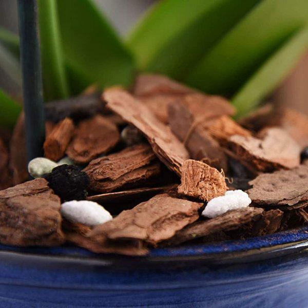 Giá thể trồng Hoa lan cao cấp Tropical Premium 1.1
