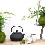 Kokedama - Nghệ thuật trồng cây không chậu của người Nhật Bản