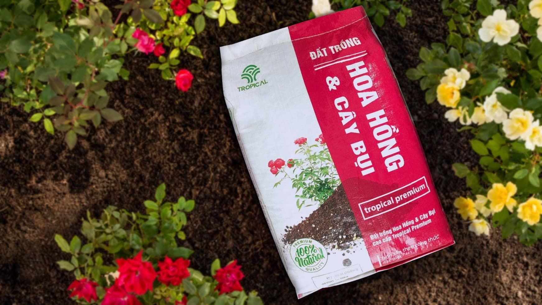 đất trồng hoa hồng Tropical Premium 1