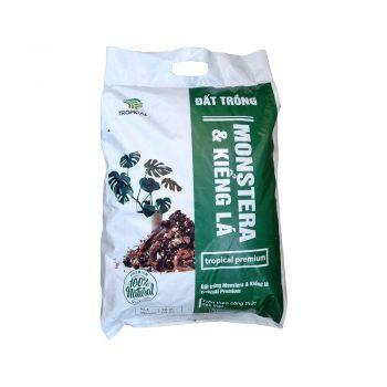 Đất trồng monstera - kiểng lá - cây nội thất tropical 01