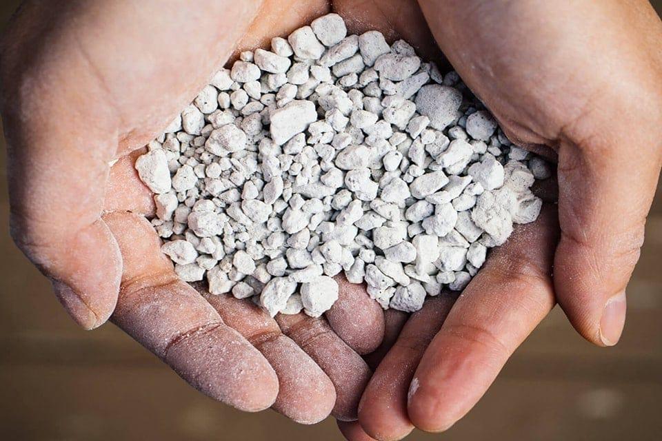 Có nên sử dụng đá Perlite trồng cây giống?