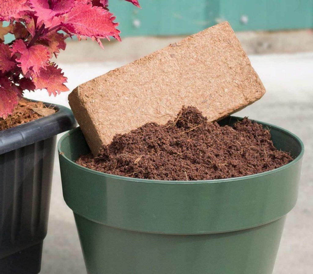 Cách xử lý xơ dừa để trồng cây